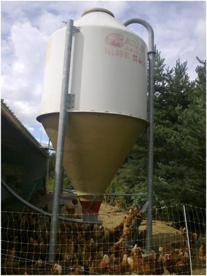Silo contenant un mélange de céréales biologiques, adapté à la croissance et à l'âge des poules.