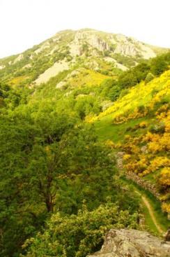 Chemin et paysage